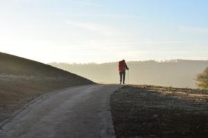 Bild von einem Wanderer auf einem Weg