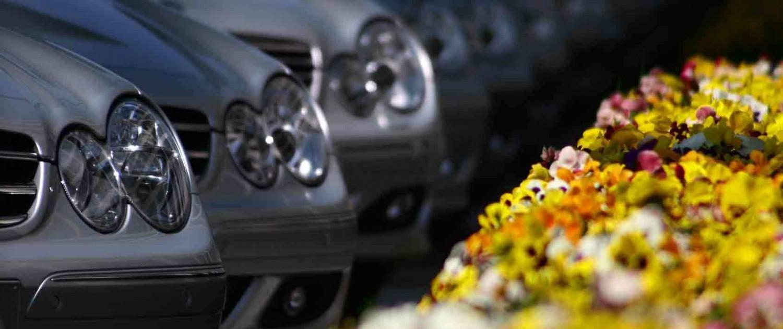 Mercedes Modelle stehen auf einem Parkplatz