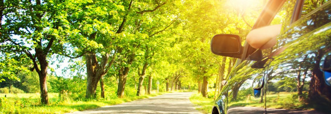 Entspannter Autofahrer im Sonnenschein