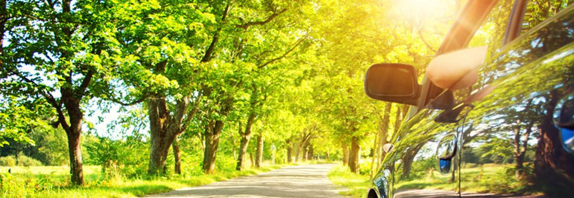 Bild von Auto, Natur und Sonnenschein