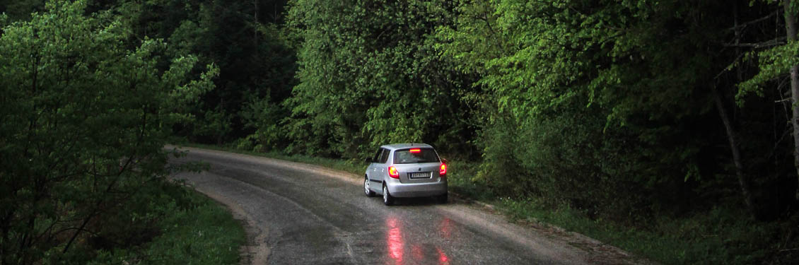Bild von einem fahrende Auto auf einer Waldstraße