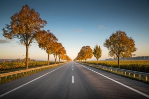 Bild einer Landstraße